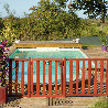 Barriere piscine bois Natural couleur acajou